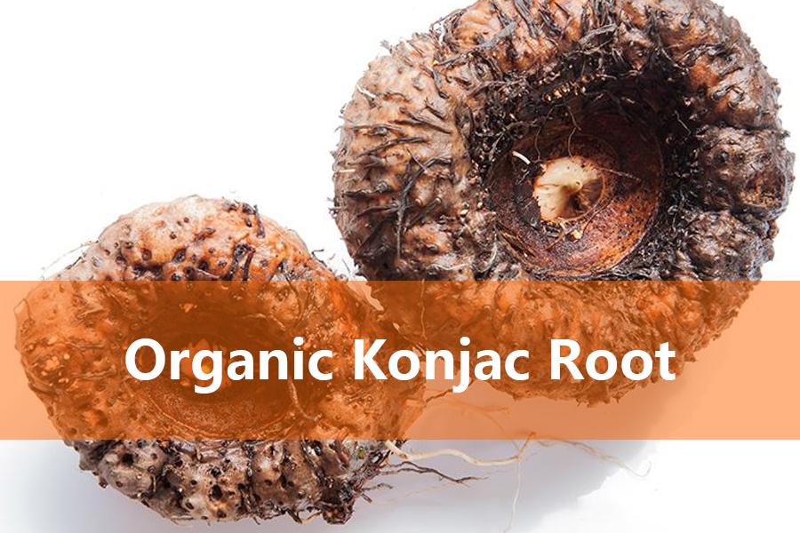 organic konjac root